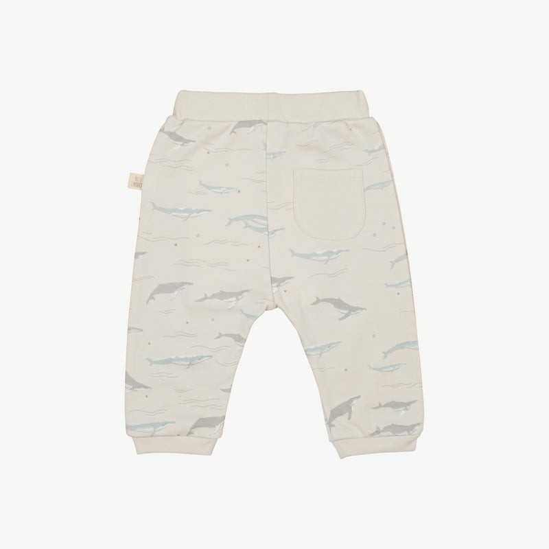 'passing whales' glacier grey basic pants