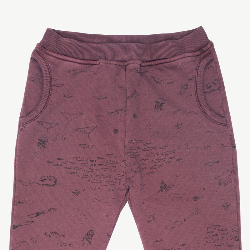 'the story' plum wine jogger