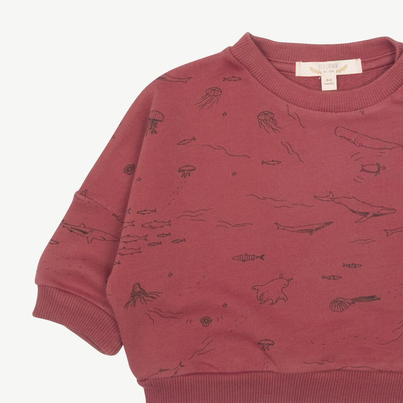 'the story' rosewood sweatshirt