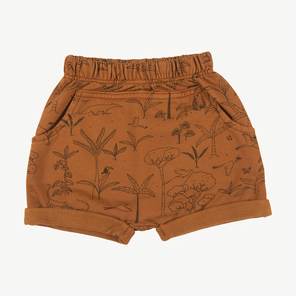 'the story' glazed ginger shorts