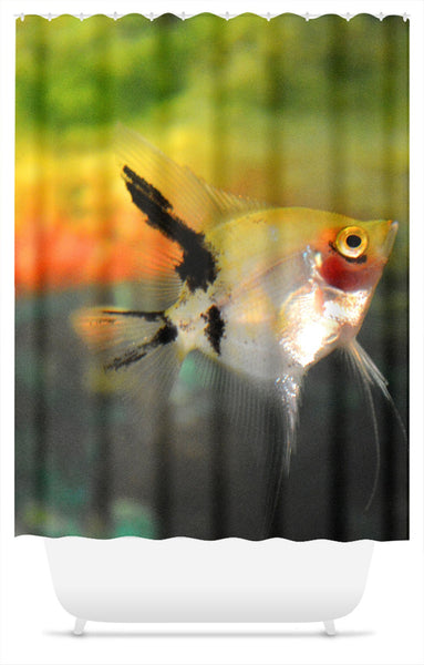 Angel Fish Shower Curtain Multi-Colored 71x74 or 71x94