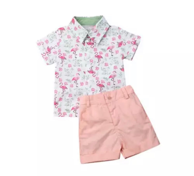 Flamingo Set - Pink