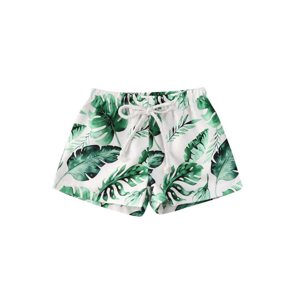 Palm Leaves Boardies