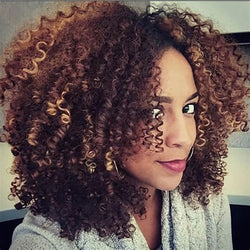 www.Petalsfashionz.com Quick shipping low prices women's Brazilian Remy & Non-Remy Hair WTB Brown Blonde Mixed Synthetic Curly Wigs for Women Short Kinky Curly Wigs African American Natural Black Hair 9 Colors