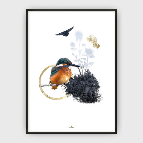 KINGFISHER PLAKAT