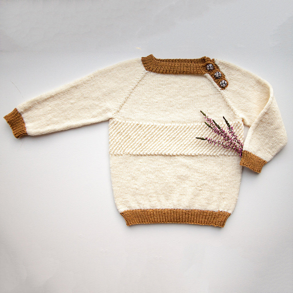 Chameleon Sweater 5-10 år