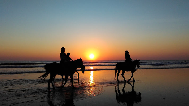 Equestrian Beach Sunset Ride