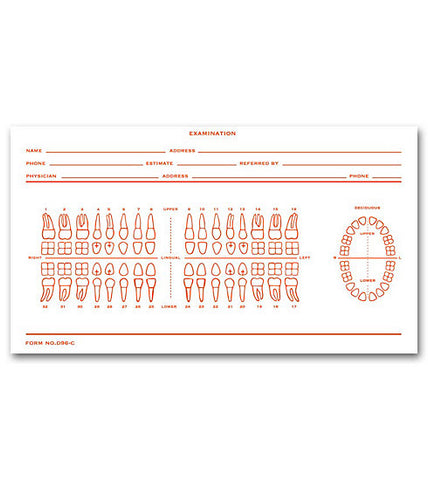 Dental Exam Slip, Numbered Teeth System C