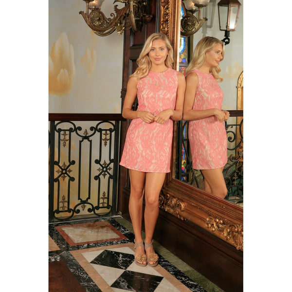 Dusty Pink Lace Party Trendy Chic Day Evening Shift Mommy and Me Dress Plus Size
