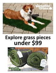Cute Fun Small Synthetic Artificial Grass Pieces under $99.99... get creative!  mats. rugs. for pets, for decks, for retail, for display