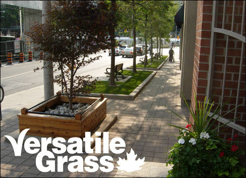 commercial Versatile synthetic artificial grass turf Toronto GTA Ontario