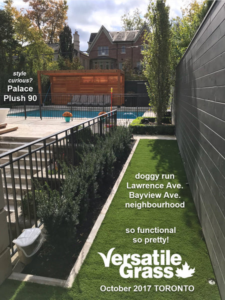 dog runVersatile synthetic artificial grass turf Toronto GTA Ontario