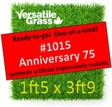 Piece #1015 Anniversary 75 1ft5 x 3ft9 synthetic artificial grass ELM