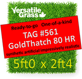 TAG#561 GoldThatch 80 Harmonized HR Synthetic Artificial Grass 5ft x 2ft4 Elm