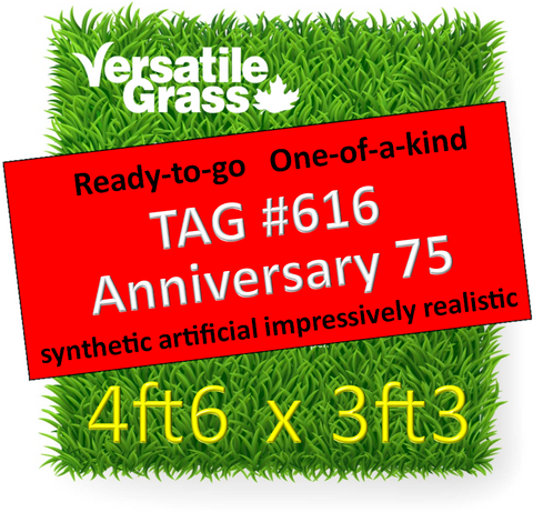 TAG#616 Grandeur Anniversary 75 Synthetic Artificial Grass 4ft6 x 3ft3 Elm
