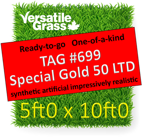 TAG#699 Special Gold 50LTD Synthetic Artificial Grass 5ft x 10ft
