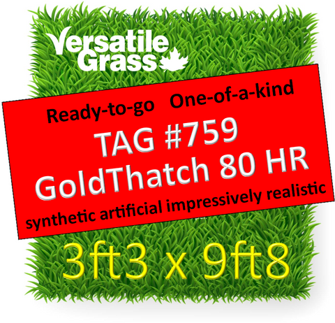 TAG#759 GoldThatch 80 Harmonized Surface Synthetic Artificial Grass 3ft3 x 9ft8 Elm