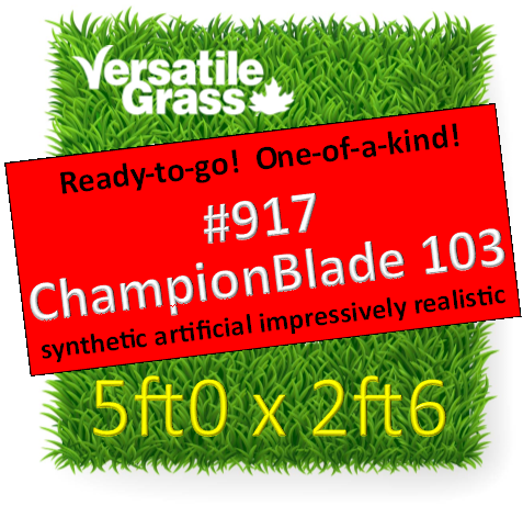 Piece #917 Champion Blade 103  5ft0 x 2ft6