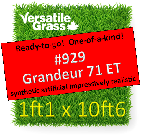 Piece #929 Grandeur 71 ET Synthetic Artificial Grass 1ft1 x 10ft6  SStor