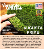 Piece #1257 Augusta Prime 90  5ft3 x 5ft9 synthetic artificial grass SSTOR
