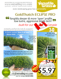 TAG#716 Eclipse Pro Synthetic Artificial Grass 4ft1 x 2ft4 Elm