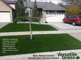 Piece #1080 Refined Gold 82 5ft1 x 3ft6 synthetic artificial grass SSTOR