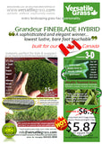 Piece #1003 FineBlade Hybrid 2ft2 x 4ft0 Synthetic Artificial Grass ELM