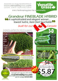 Grass #869  FineBlade Hybrid Synthetic Artificial Grass 1ft2 x 19ft0 Elm