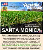 Piece #1246 Santa Monica 77 8ft4 x 1ft8 synthetic artificial grass  ELM
