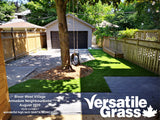 Piece #1236 Santa Monica 77  4ft2 x 7ft9 synthetic artificial Grass SSTOR