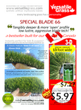 #852 Special Blade 66  Synthetic Artificial Grass 2ft8 x 4ft4 Elm