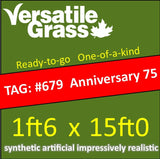 TAG#679 Grandeur Anniversary 75 Synthetic Artificial Grass 1ft6 x 15ft SStor