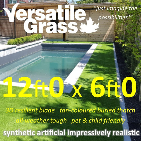 12ft x 6ft Multi Usage Synthetic Artificial Grass