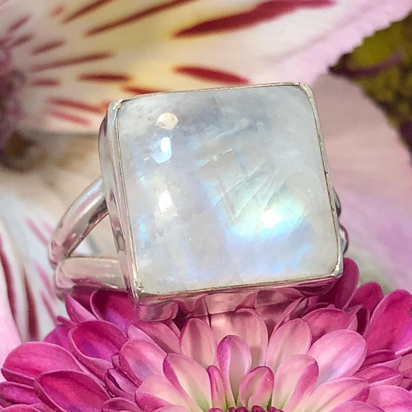 Square Moonstone Ring - Sterling Silver Rings - AlphaVariable