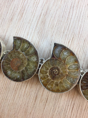 Sterling Silver Ammonite Bracelet - Bracelet - AlphaVariable