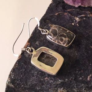 Turritella Agate Earrings - Earrings - AlphaVariable