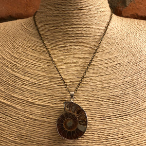 Ammonite Necklace - Necklace - AlphaVariable