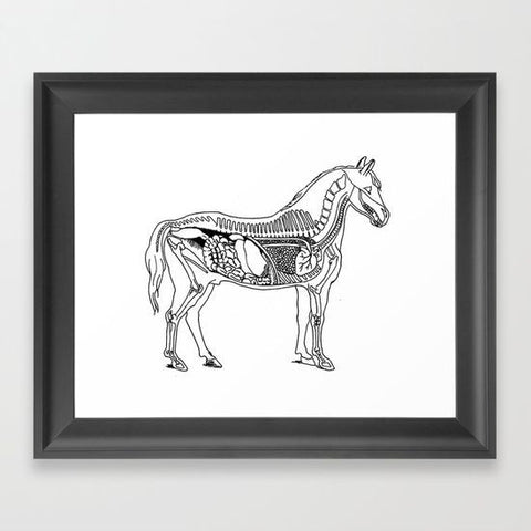 Horse Anatomy Framed Art Print - Framed Art Prints - AlphaVariable