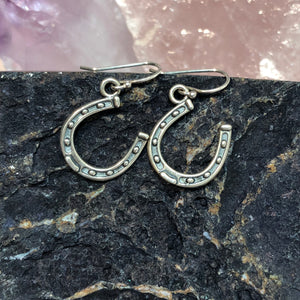 Horseshoe Earrings - Earrings - AlphaVariable