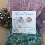 Moonstone Studs -  - AlphaVariable