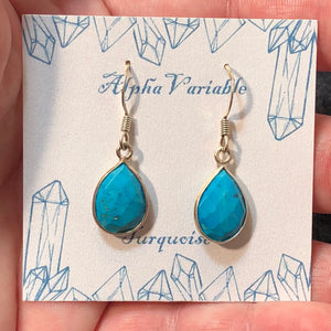 Turquoise Teardrop Earrings - Earrings - AlphaVariable