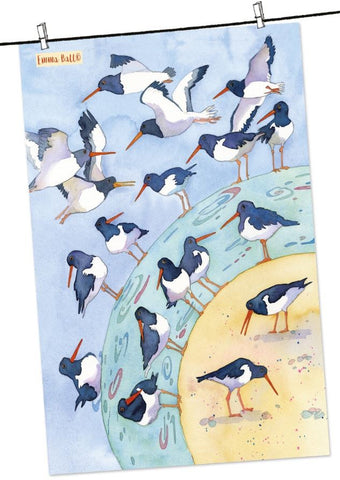 "Emma Ball ""Oyster Catchers"", Pure cotton tea towel. Printed in the UK. - Home Landing"