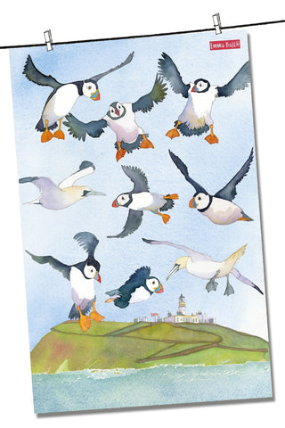 "Emma Ball ""Puffin 111 – Coastal Puffins"", Pure cotton tea towel. Printed in the UK. - Home Landing"