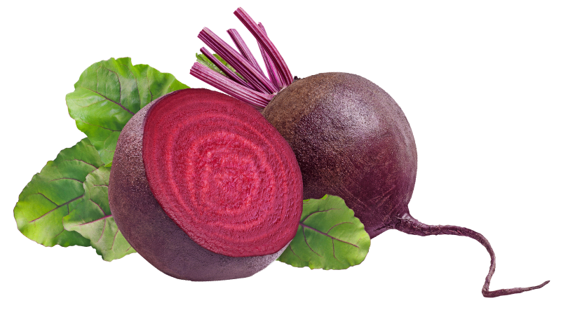 Organic Beetroot from Canada