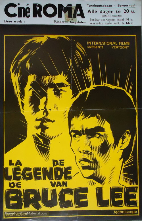 Bruce Lee, the Legend Poster//Bruce Lee, the Legend Movie Poster//Movie Poster//Poster Reprint
