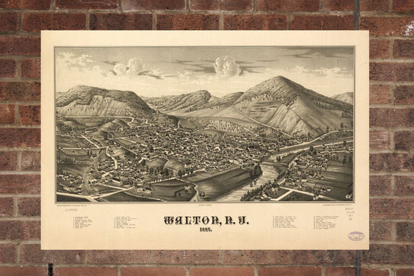 Vintage Walton Print, Aerial Walton Photo, Vintage Walton NY Pic, Old Walton Photo, Walton New York Poster, 1887