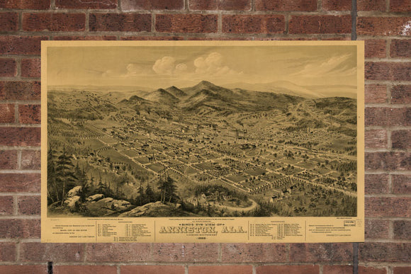 Vintage Anniston Print, Aerial Anniston Photo, Vintage Anniston AL Pic, Old Anniston Photo, Anniston Alabama Poster, 1888
