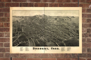 Vintage Danbury Print, Aerial Danbury Photo, Vintage Danbury CT Pic, Old Danbury Photo, Danbury Connecticut Poster, 1884