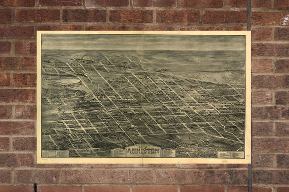 Vintage Anniston Print, Aerial Anniston Photo, Vintage Anniston AL Pic, Old Anniston Photo, Anniston Alabama Poster, 1903
