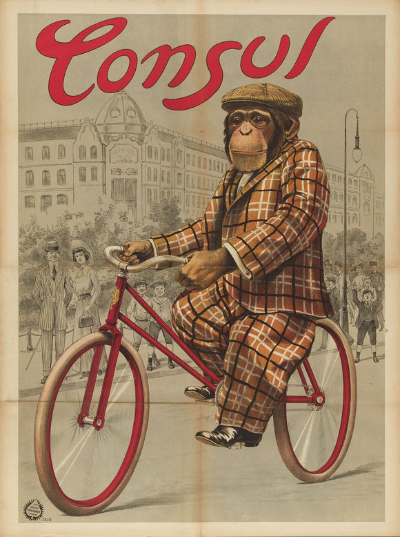 Consul The Monkey Riding A Bike